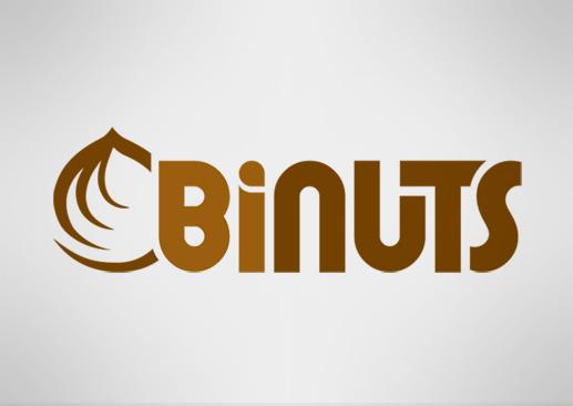 Binuts kurumsal kimlik tasarımı